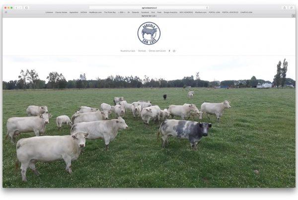 proyectos - agricola san luis 600x403 - TRABAJOS