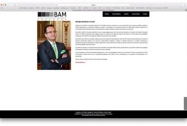 proyectos - bam 600x403 - TRABAJOS