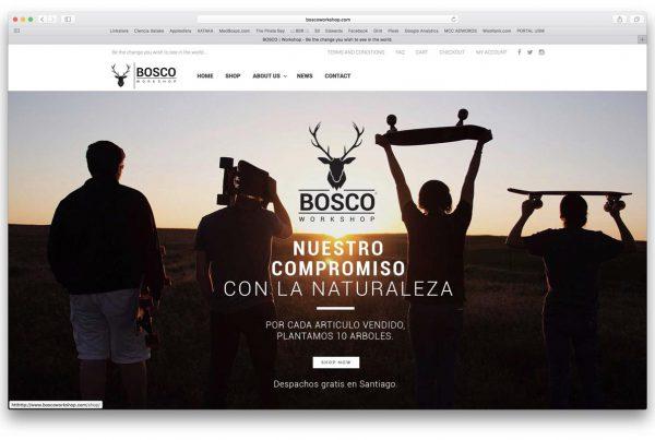 proyectos - bosco 600x403 - TRABAJOS