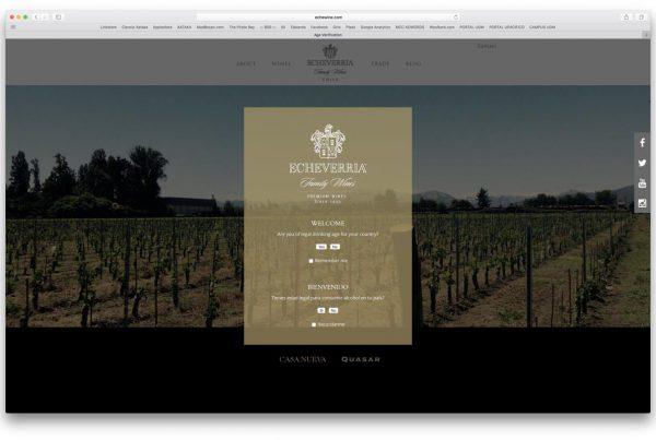 proyectos - echeverria wines 600x403 - TRABAJOS