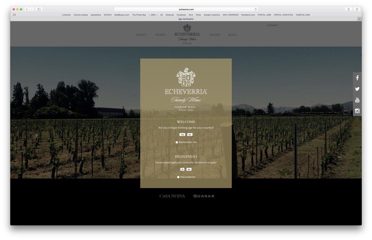 - echeverria wines - Proyectos
