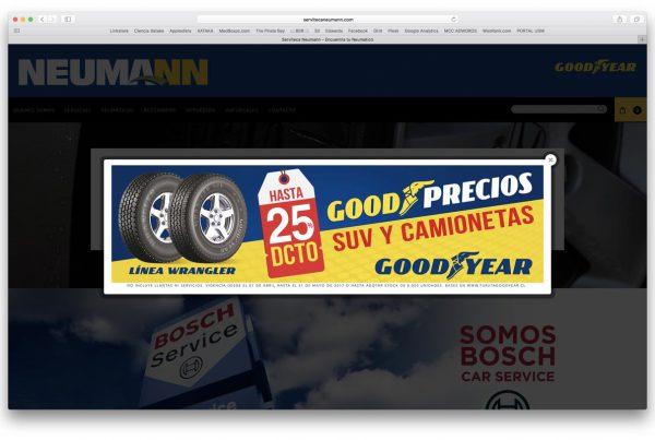 proyectos - neumann 600x403 - TRABAJOS