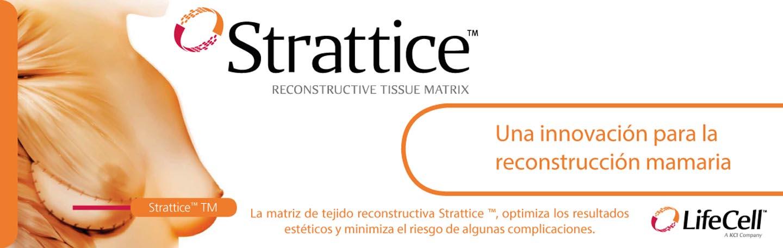 - banner Stratisse - Proyectos