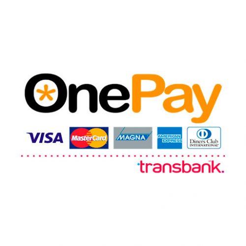 diseño producción multimedia y desarrollo web - OnePay pago 500x500 - DISEÑO Y DESARROLLO WEB