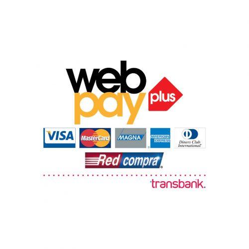 diseÑo y desarrollo web - webpayplus 500x500 - DISEÑO DESARROLLO SITIOS WEB