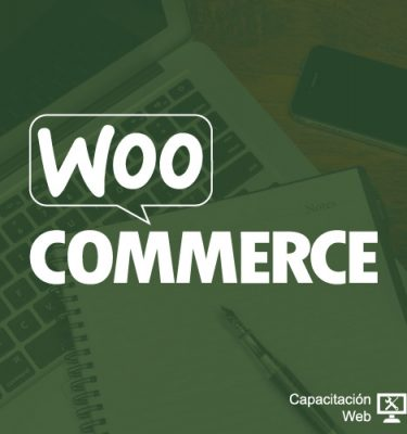 capacitaciÓn - curso comercio electronico woocommerce blanco 375x400 - CAPACITACIÓN