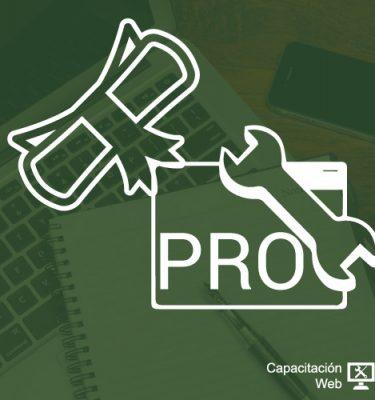 capacitaciÓn - diplomado webmaster desarrollo web PRO 375x400 - CAPACITACIÓN