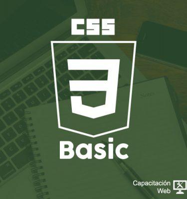 capacitaciÓn - diseno estilo sitio web basico 375x400 - CAPACITACIÓN