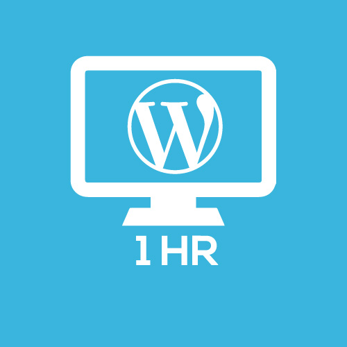 - soporte Wordpress 1hora - 1 hora de soporte general de WordPress