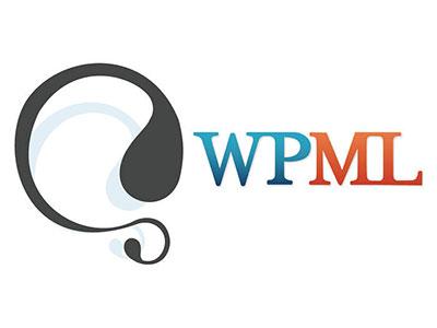 diseño producción multimedia y desarrollo web - wpml - DISEÑO Y DESARROLLO WEB